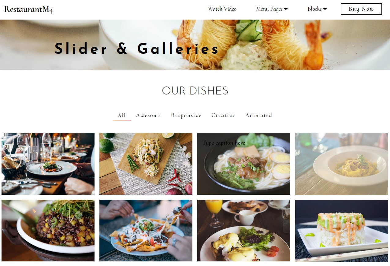 Restaurant Sliders & Galleries Template