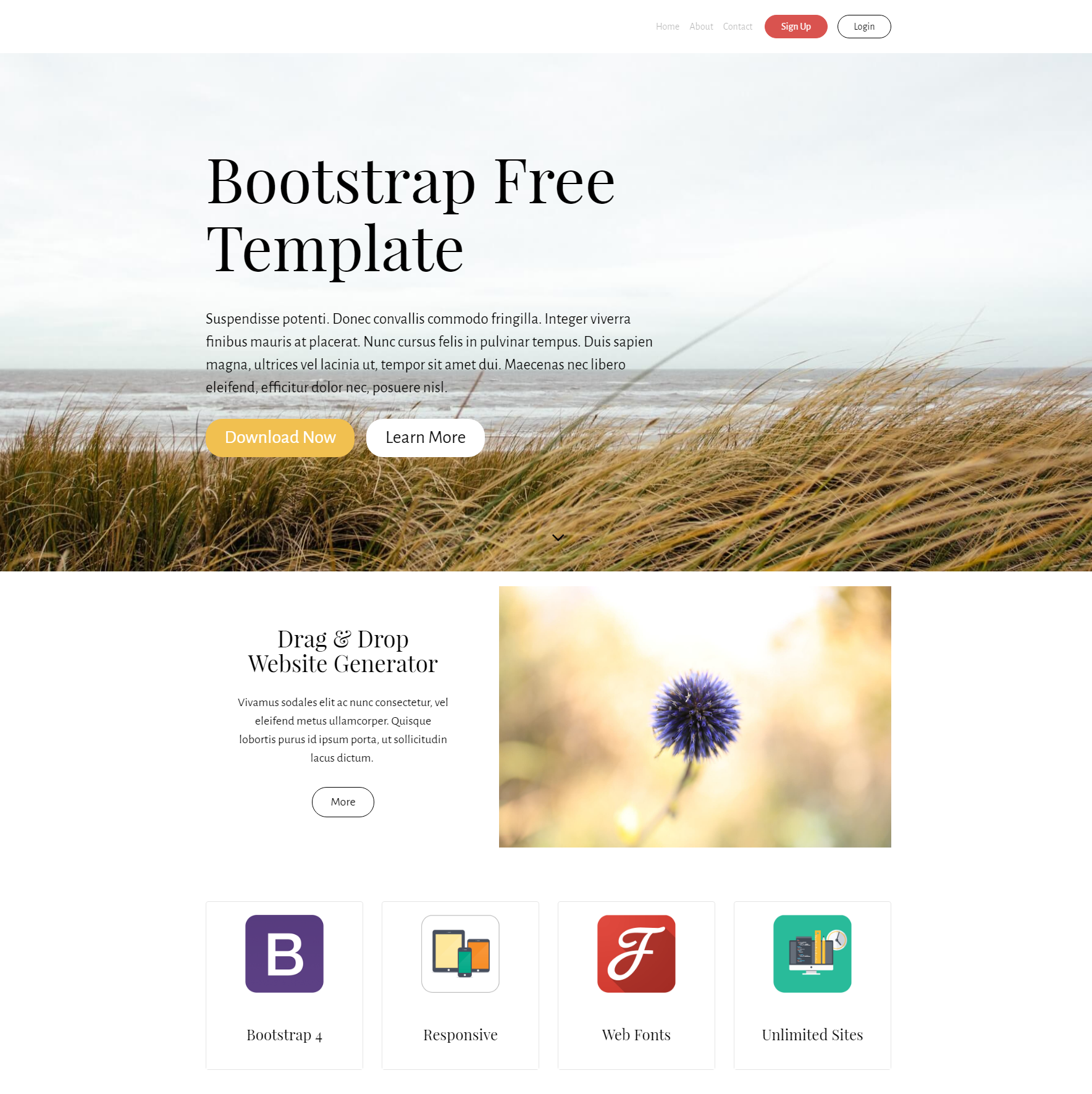 Download Bootstrap Free Themes