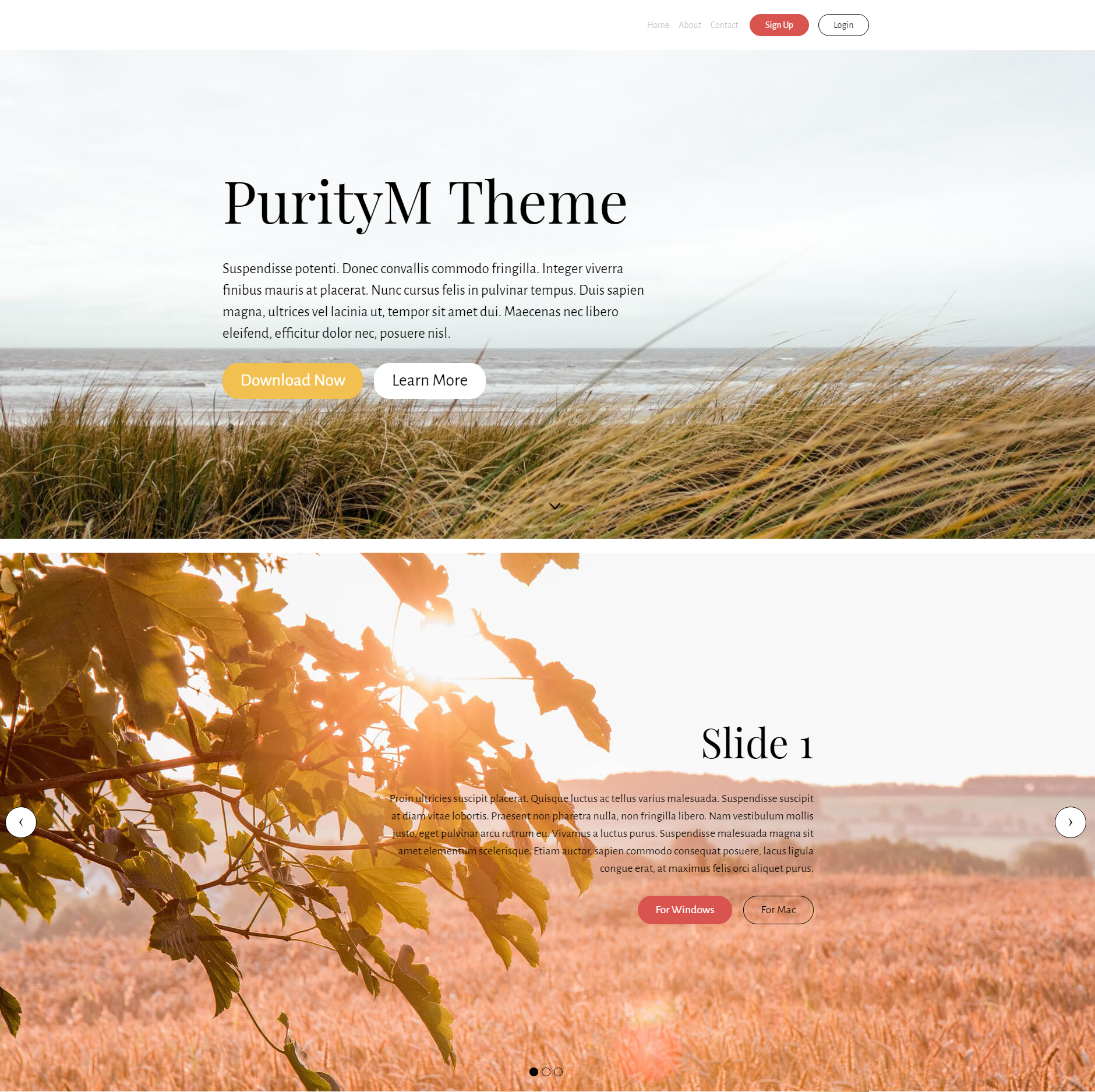 HTML Bootstrap PurityM Themes