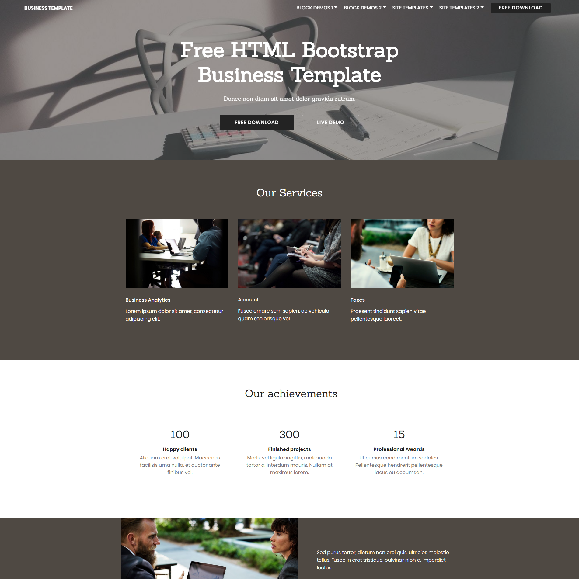 Free Bootstrap Business Themes